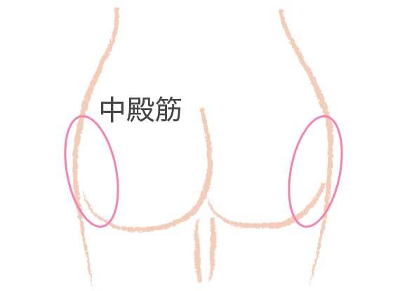 お尻の形に影響する中臀筋